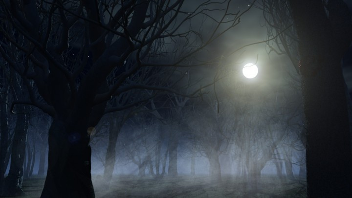 horror-forest
